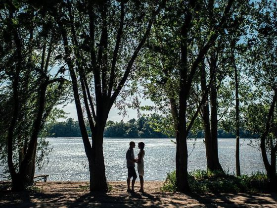 kányádi sándor két nyárfa leiner fotó