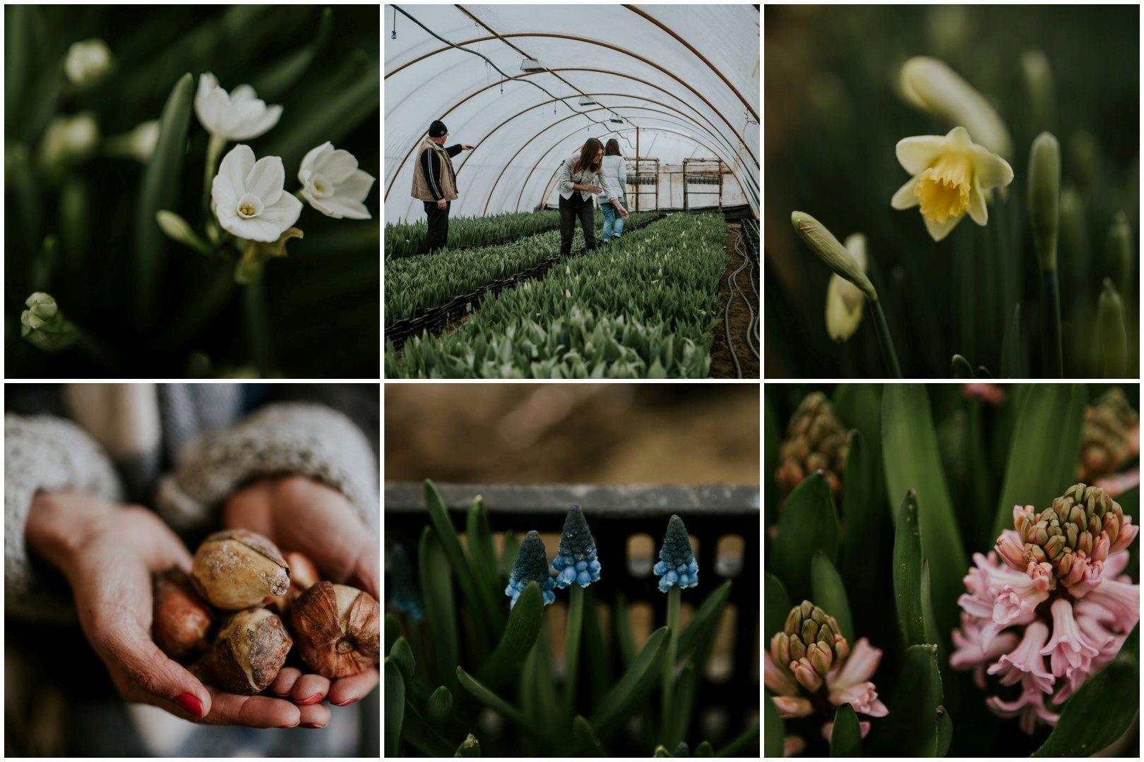 ,Wild Flower Bar,Klenovszki Mimi,virágbolt budapest,virágüzlet budapest,virágbolt,virágüzlet,budapesti virágbolt,legjobb budapesti virágüzlet,virágpiac,virág,tavasz,tulipán,nárcisz,