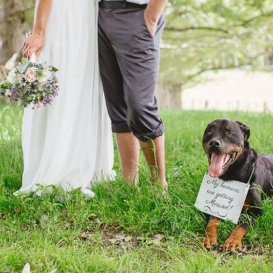 ,feliratos táblák,esküvői dekoráció,esküvődekor,