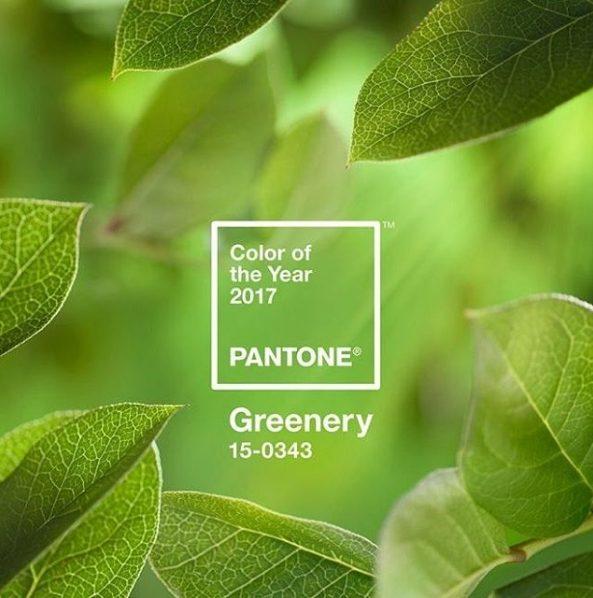 ,greenery,év színe,color of the year,pantone,pantone év színe,év színe esküvő,greenery esküvő,lombzöld,